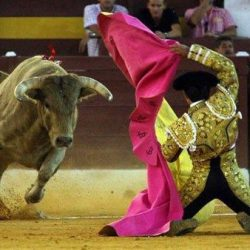 Los Toros – Traditions