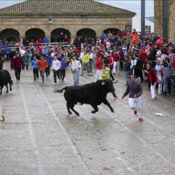 El Carnaval del Toro – Traditions